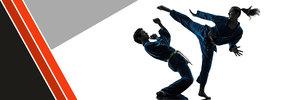 Anteprima Karate*