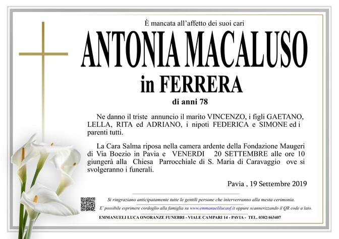 Necrologio di MACALUSO ANTONIA