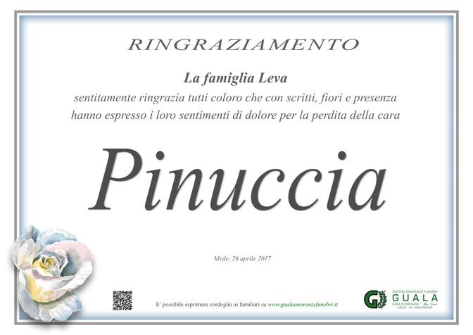 Ringraziamento per Pinuccia Pizzocaro in Leva