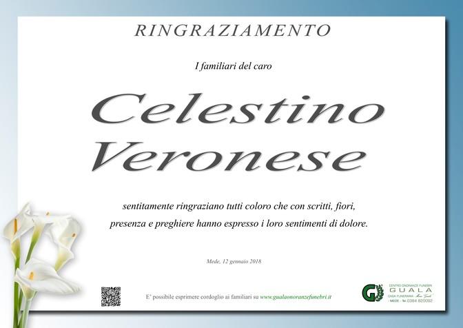 Ringraziamenti per Celestino Veronese
