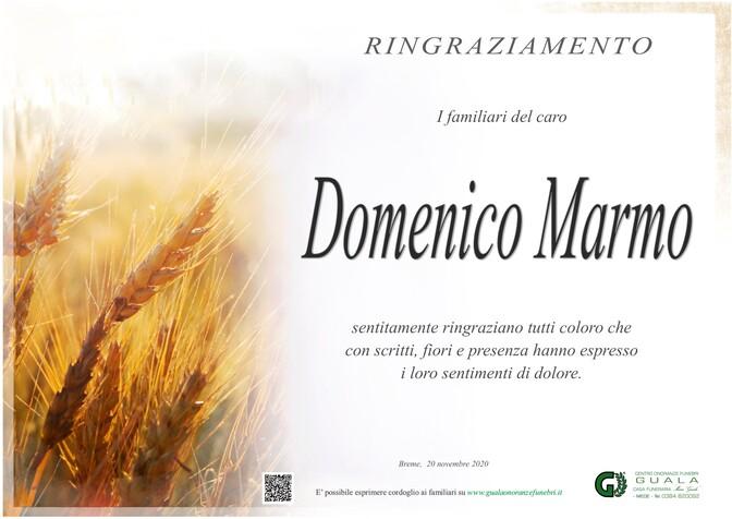 Ringraziamento per Domenico Marmo