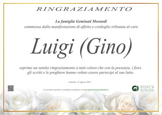 Ringraziamento per Luigi Geminati (Gino)