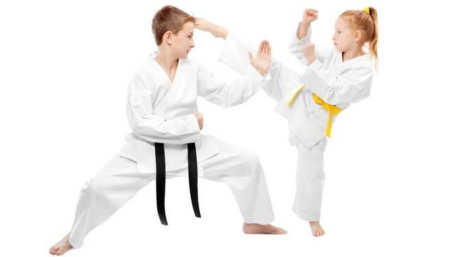 Club Interamnia | Anteprima Karate Bambini