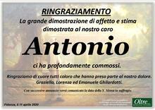 Ringraziamento per Antonio Ghilardotti