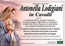 Necrologio di Antonella Lodigiani in Cavalli