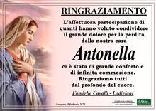 Ringraziamento per Antonella Lodigiani in Cavalli