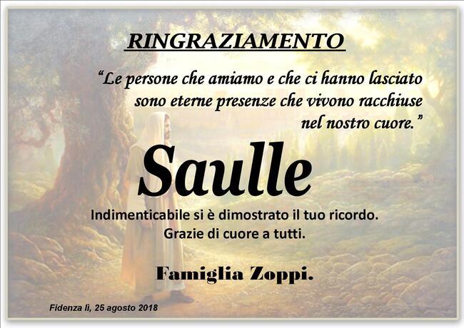Ringraziamenti per Saulle Zoppi