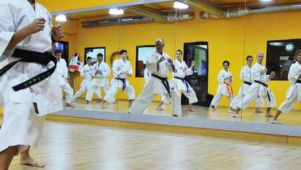 Anteprima Karate Adulti*